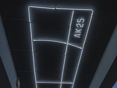 Neon AK25